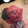 P_filip_cover růže pivonka
